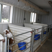 Calf Warming Room